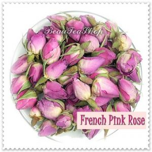 teh-french-pink-rose